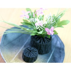 Standing Charcoal Frog x 2 + Flower Organ Set for Ikebana